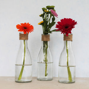 Bottle Vases With Jute Detail - home accessories