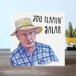 You Flamin' Galah Greetings Card