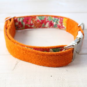 Bonnie Harris Tweed Dog Collar - dog collars
