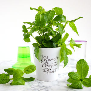 Personalised Grow Your Own Mojito Kit - 30th birthday gifts