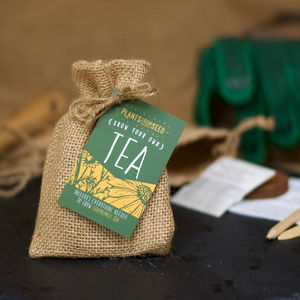 Grow Your Own Chamomile Tea Mini Plant Kit - wedding favours