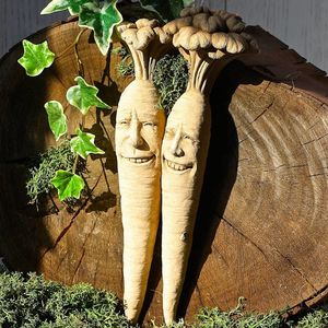 Bunch Of Carrots Garden Wall Decoration - new in garden