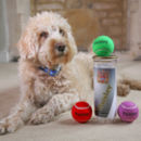 Personalised Dog Tennis Balls