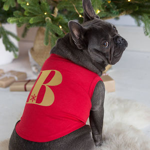 Christmas Alphabet Personalised Pet Vest - pets christmas clothing