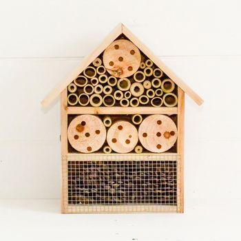 Wooden Insect Hotel
