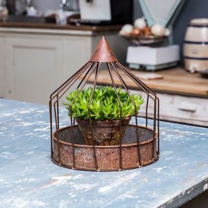 Aged Plant Cage - art & decorations