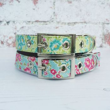 Dog Collar Traditional Buckle Summer Garden Flowers