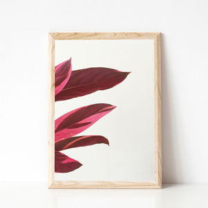 Red Leaves I Photographic Print - view all new