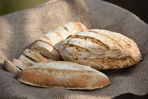 Gluten Free Sourdough Bread Mixes - baking kits