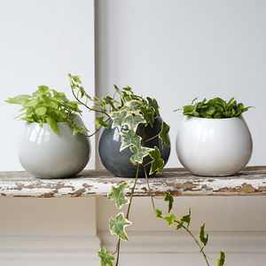 Ceramic Wall Hanging Plant Pot - 30th birthday gifts