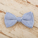 The Chichester Horizontal Striped Bow Tie And Lead