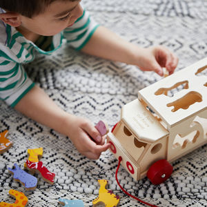 Safari Animal Personalised Shape Sorter Lorry - christening gifts