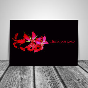 Set Of Six Pink Floral And Black Thank You Note Cards - notelets & writing paper