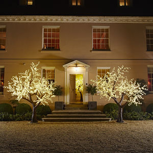 Grande LED Cherry Tree - decorative lights