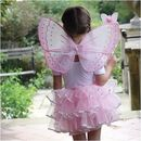 Fairy Dressing Up Set 3yrs+