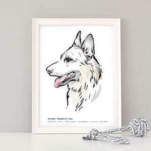 German Shepherd Dog Breed Print - pet portraits