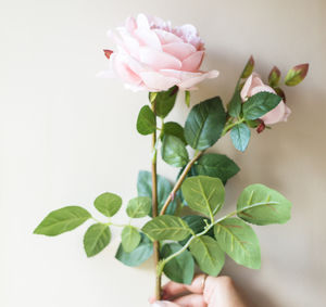 Faux Blush Pink Rose