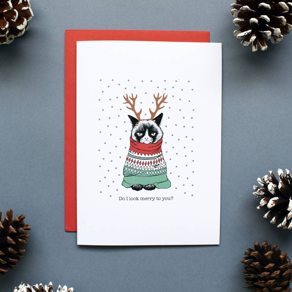 funny grumpy cat christmas card or pack by rachael hadden ...