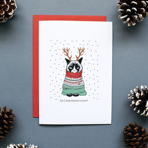 Funny Grumpy Cat Christmas Card Or Pack - funny christmas cards