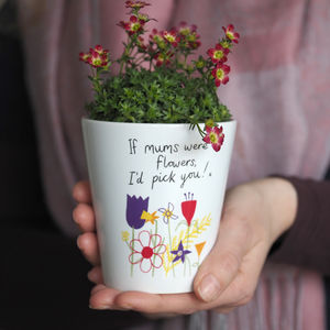 Flower Pot Vase Gift For Mums Or Grannys / With Seeds - seeds & bulbs