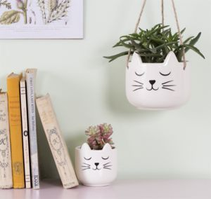 Cat Planter With A Succulent - flowers, plants & vases