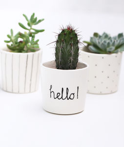 'Hello!' Ceramic Succulent Indoor Plant Pot - new in garden