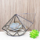 Large Diamond Glass Succulent Terrarium