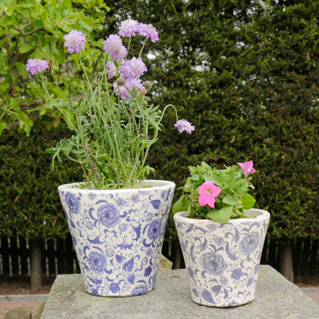 set of two fleur de lys ceramic plant pots by dibor. Black Bedroom Furniture Sets. Home Design Ideas