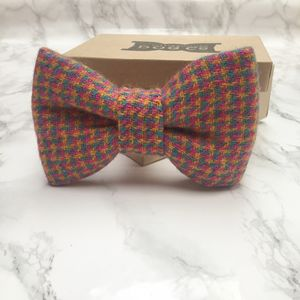 Tutti Frutti Tweed Dog Bow Tie
