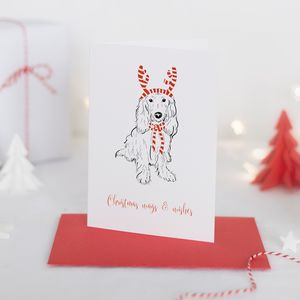 Christmas Card Mollie Party Pooch