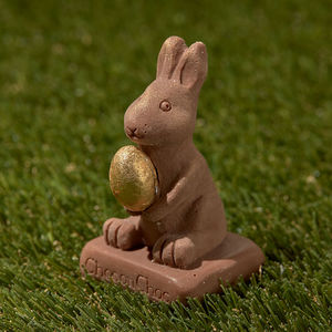Chocolate Bunny With Gold Egg