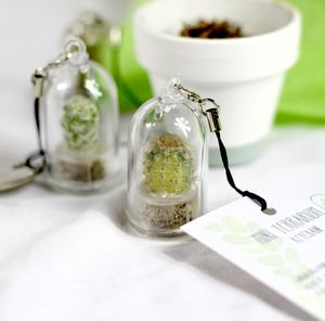 Personalised Mini Terrarium Cactus Keychain - gifts for him