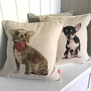 Chihuahua Feature Cushion - patterned cushions