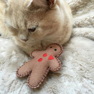 Catnip Toys, Gingerbread Man Cat Toy - gifts for pets
