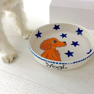 Personalised Pet Dog/Cat Ceramic Water/Food Bowl - view all new