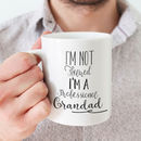 'I'm Not Retired I'm A Professional Grandparent Mug