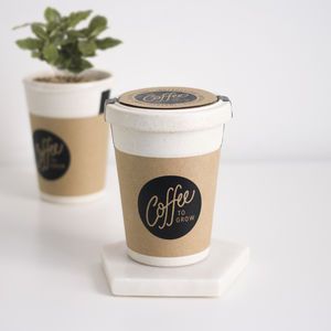 Coffee To Grow - new in garden