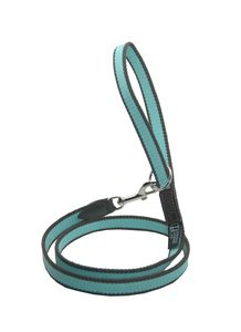 Striped Cotton Webbing Lead - dogs