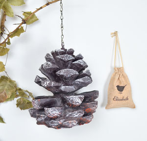 Pinecone Birdfeeder With Personalised Bird Seed Bag - personalised
