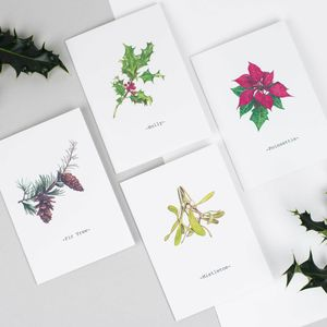 Illustrated Christmas Flowers Collection Of Four Cards - cards