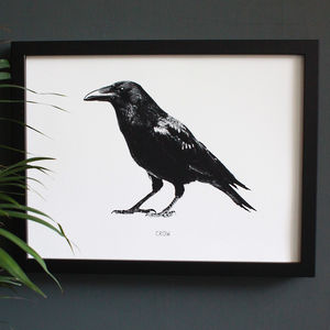 Encyclopaedic Inspired Fine Art Print, Black Crow