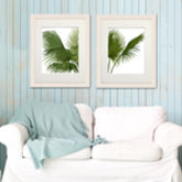 Fan Palm Print, Set Of Two Prints - prints & art