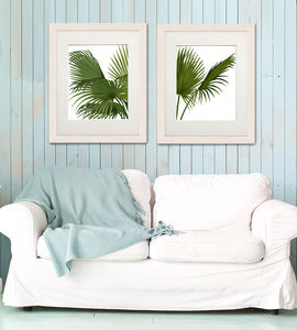Fan Palm Print, Set Of Two Prints - canvas prints & art