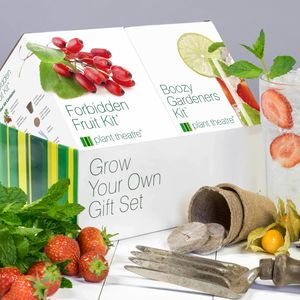 Boozy Garden And Forbidden Fruit Kit - gifts for her