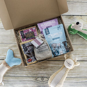 'The Treat Box' Natural Dog Gift Set