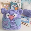 Personalised Owl Learn To Knit Craft Kit