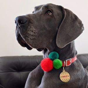Christmas Bauble Dog Tag Decoration - tree decorations