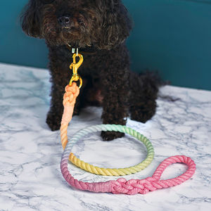 Pastel Rainbow Rope Dog Lead