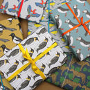 Luxury Bird And Animal Gift Wrap Pack