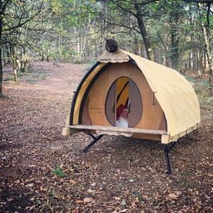 The Oak Camping Flat Pack Pod - 5th anniversary: wood